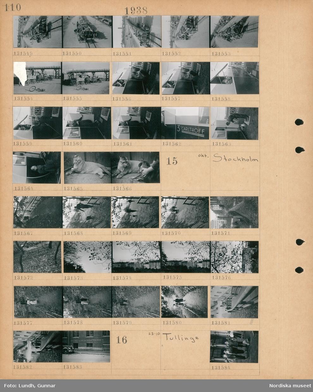 """Motiv: Höganäs; Hästdragna vagnar med betor står vid järnvägsvagnar med betor och lastas, en man och två kvinnor vid en husvagn, en man i dörren till en husvagn, husvagn med text """"3 Carlthoff"""", en flicka vid en husvagn, ett kattdjur.  Motiv: Stockholm; En man med en hund går på en stig, stadsvy, träd med fallna löv, två kvinnor går på en stig, gatuvy med fotgängare och bilar, graffiti på en vägg """" (oläsligt),, ur fackföreningarna"""".  Motiv: Tullinge; En grupp människor med sportkläder och ryggsäckar."""