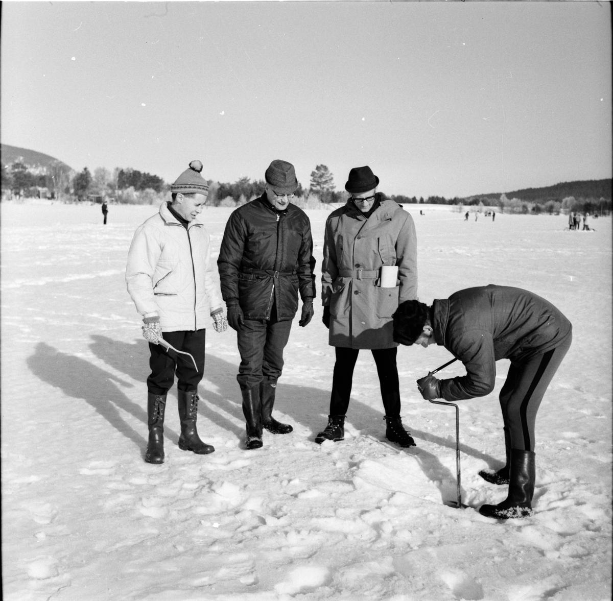 Arbrå, Skolelever pimplar på friluftsdag, April 1969