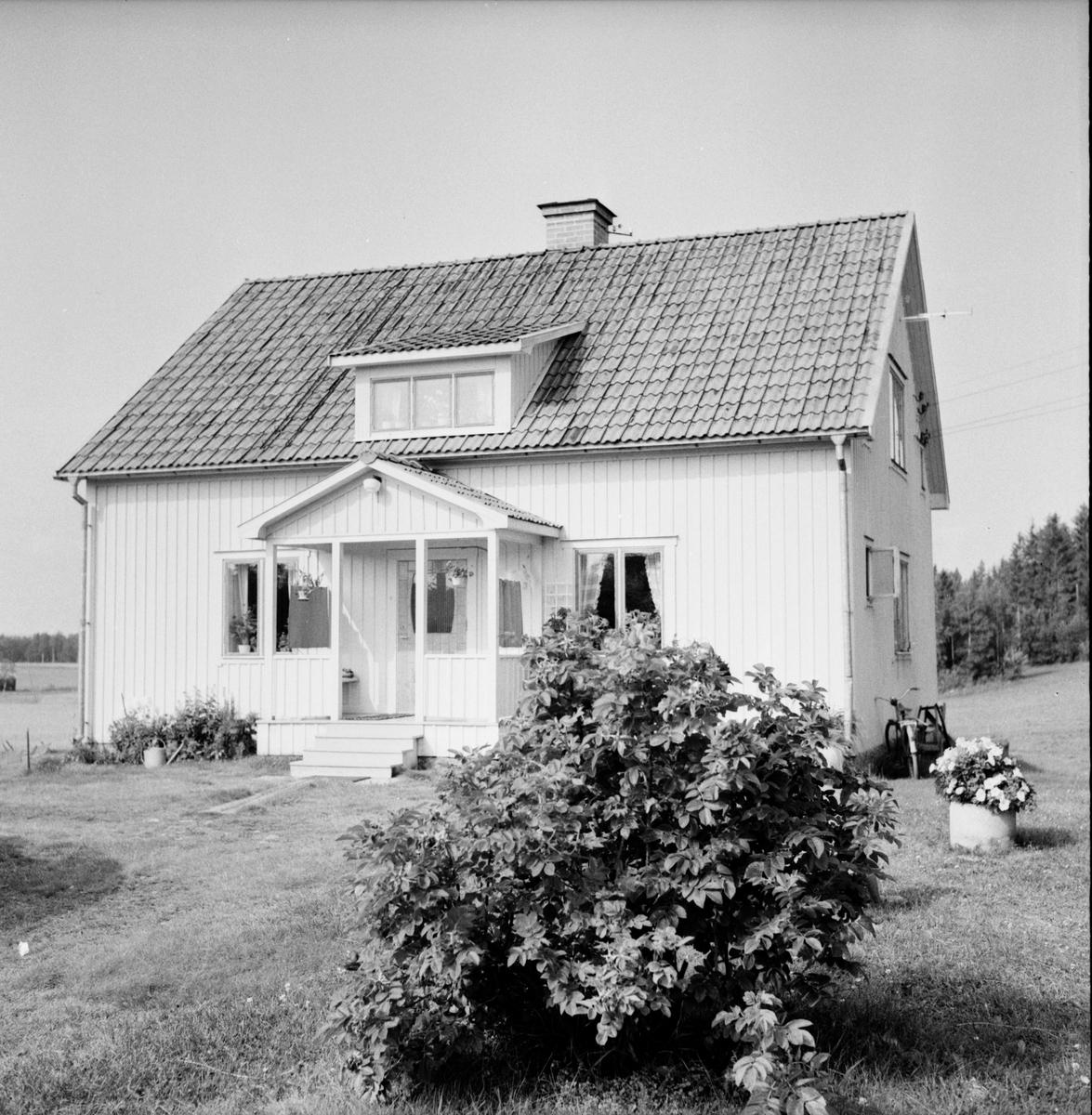 Turistservice. Bilder från Alfta, Edsbyn, Vallsta 1/8-1963