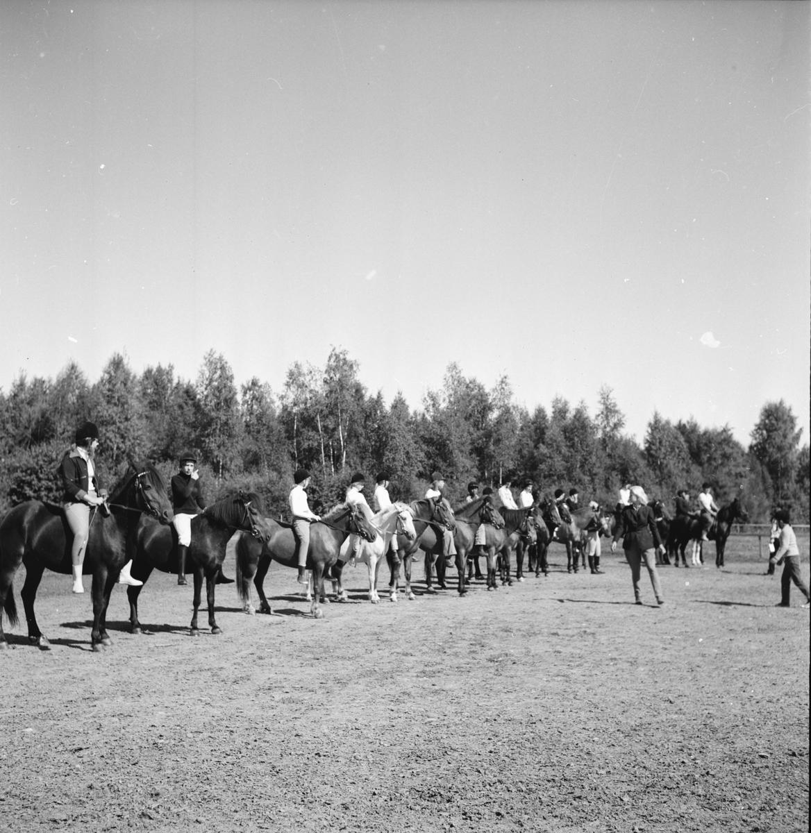Arbrå ridskola Augusti 1972