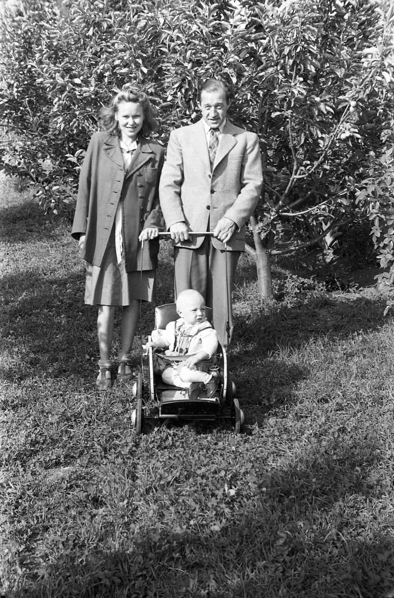 Et uidentifisert foreldrepar og deres barn. Serie på seks bilder, noen av foreldre og barn sammen, noen av barnet alene.