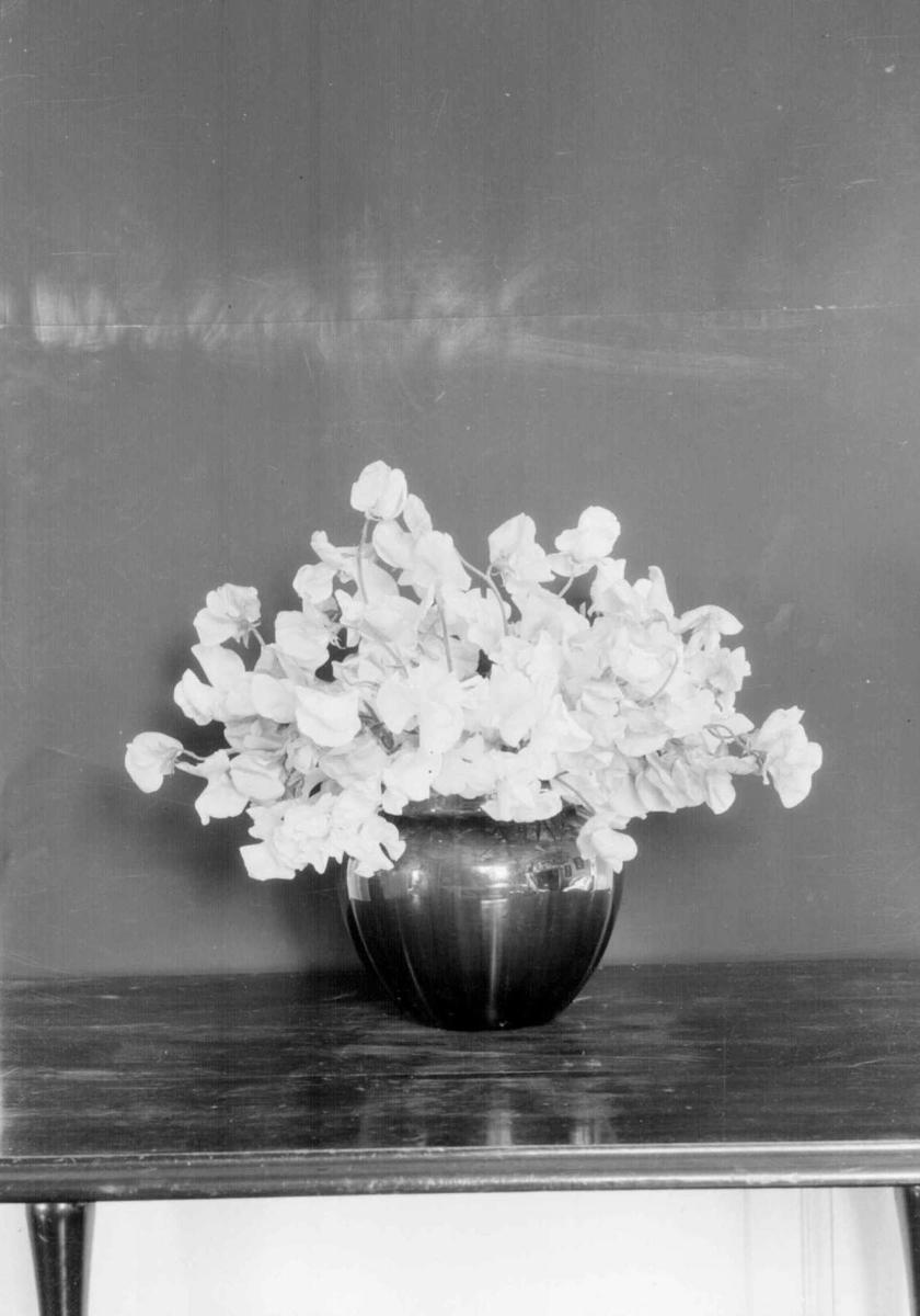 Stilleben, blomster i vase.