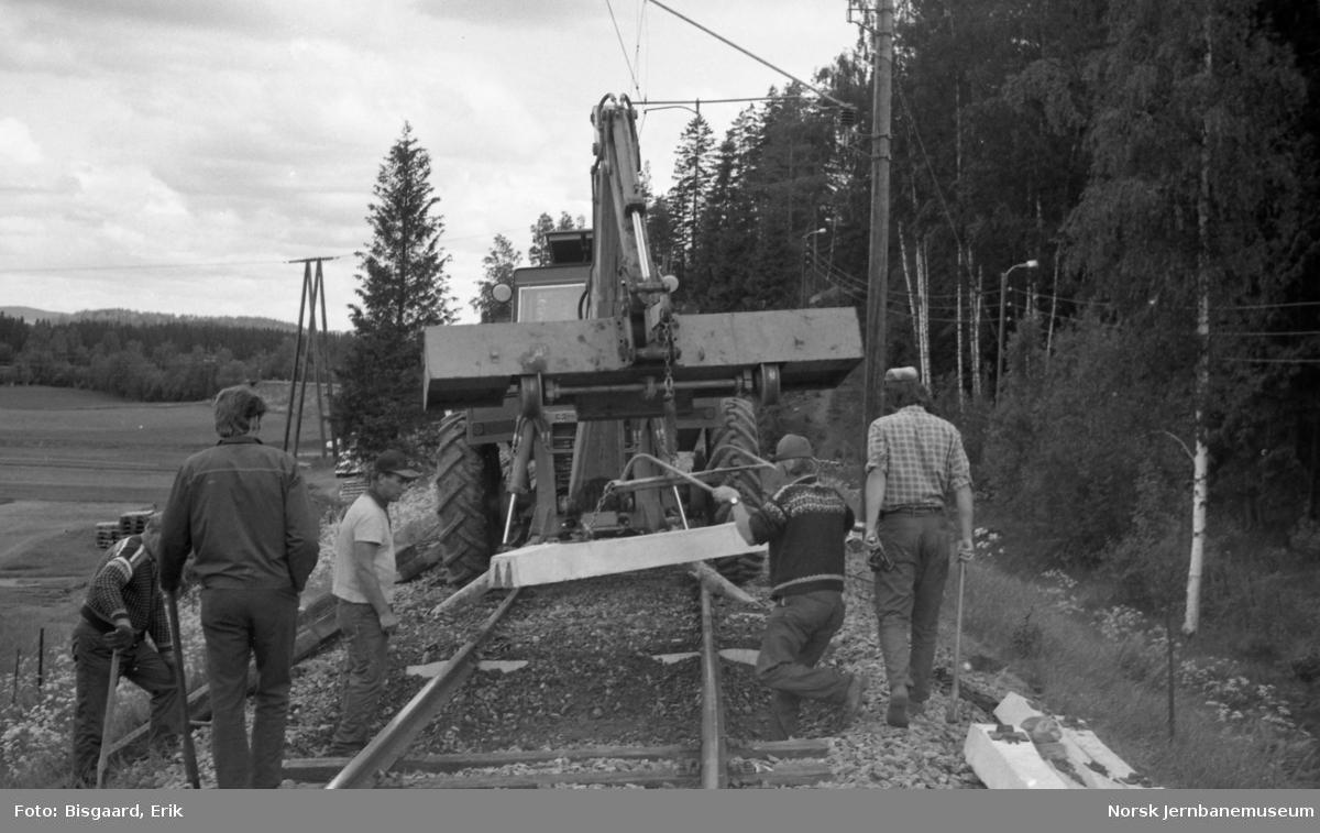 Svillebytte etter Hamar-metoden ved Trostebekk mellom Spydeberg og Askim