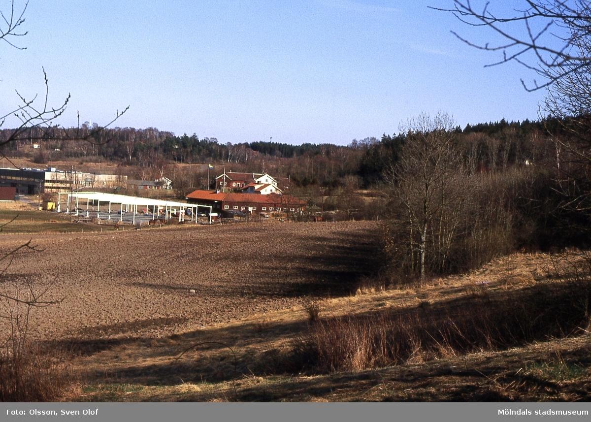 En manege uppförs på Taljegården 1 i Kärra, Mölndal, år 1984. Kä 4:6.