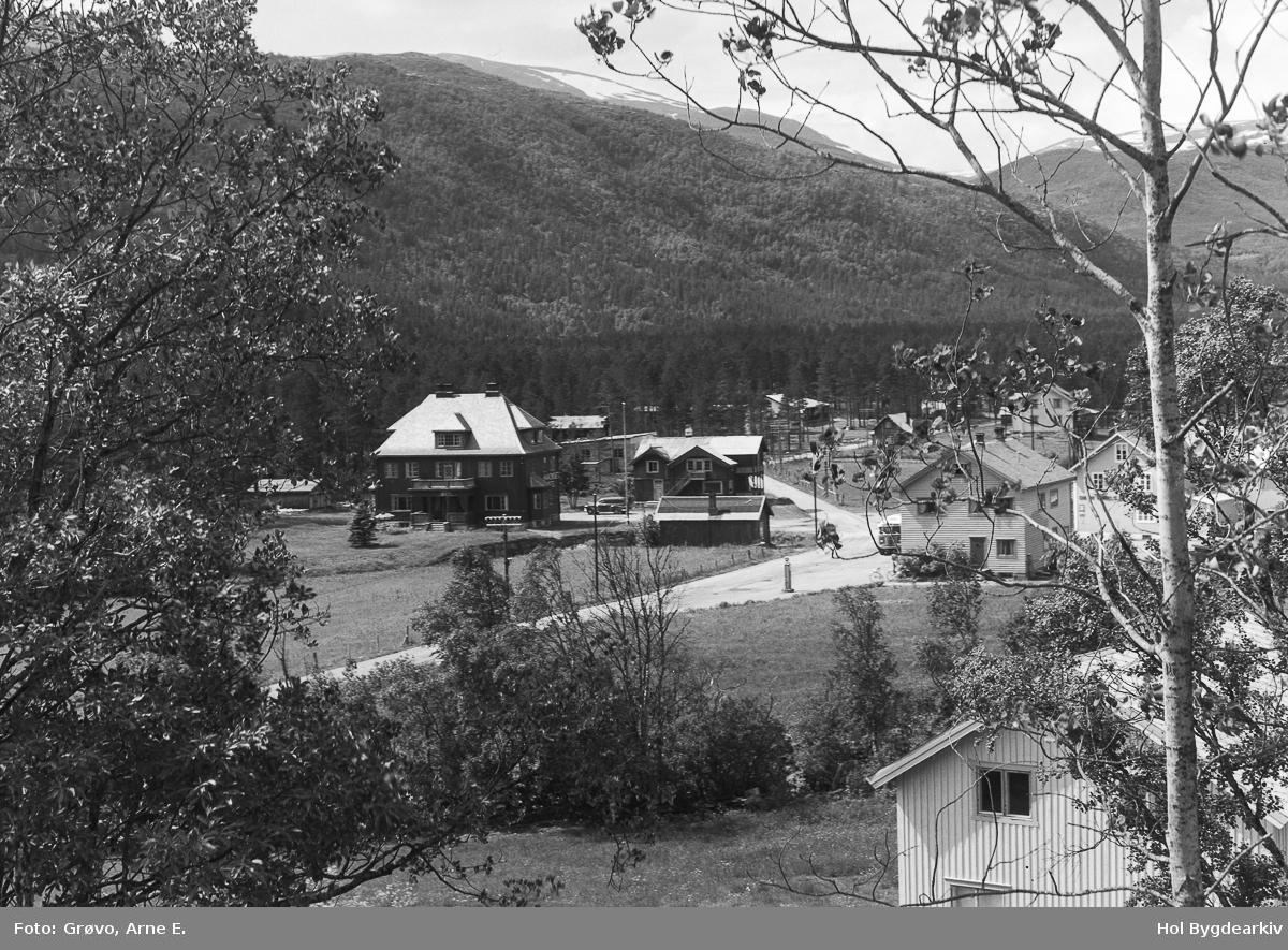 Hotell, Håkonset, Hovet, landskap, veg, arkitektur, Sunnhov