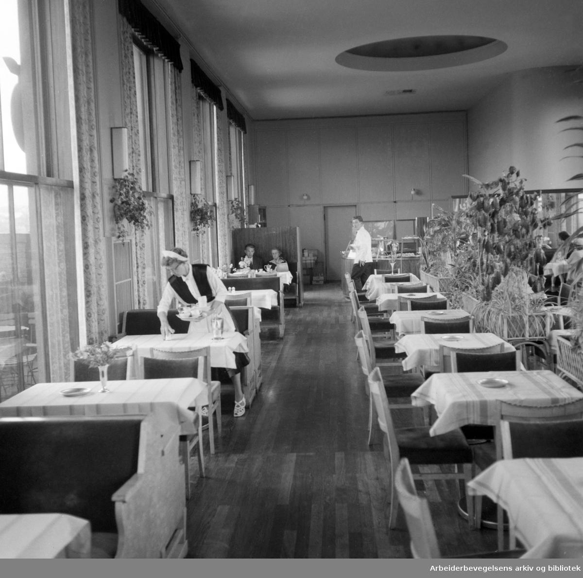 Stratos. Juni 1954