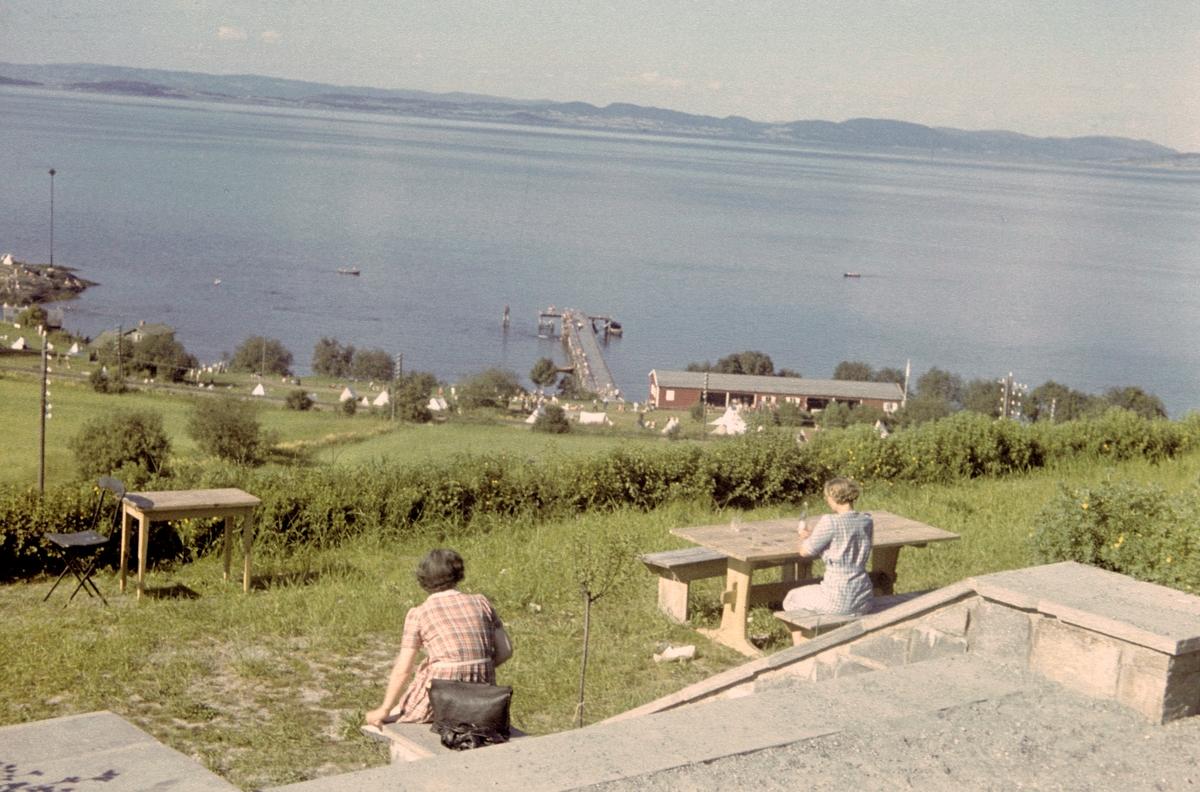 Sommer ved Vikhammerløkka