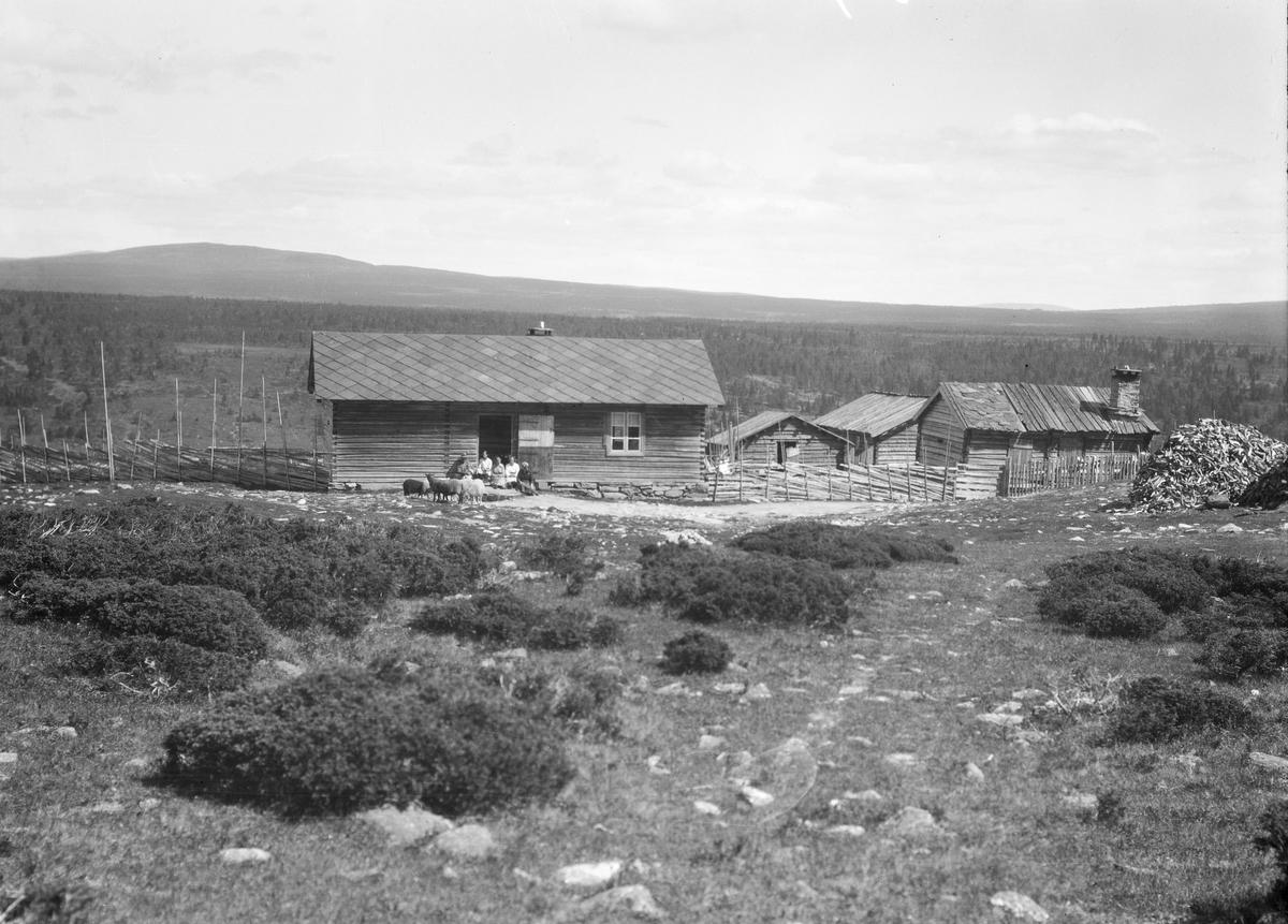Ringebu. Skotten, et seterområde øst for Skottåsen.  Bildet skal være fra Skjeggestad seter.