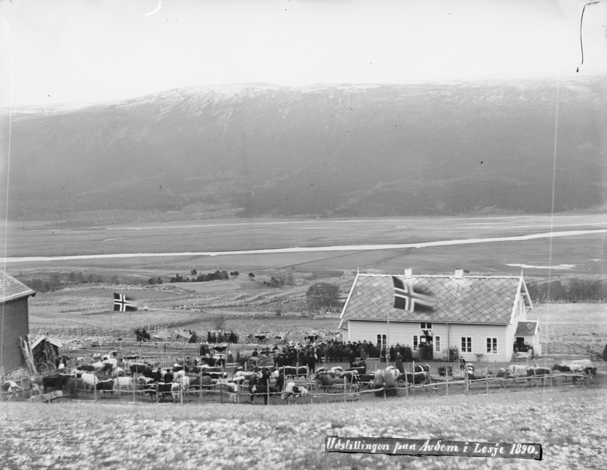 Utstilling av fe på Avdem Lesja 1890, fesjå med kyr og folk. Lesja-leira før oppdyrking i dalbunnen.