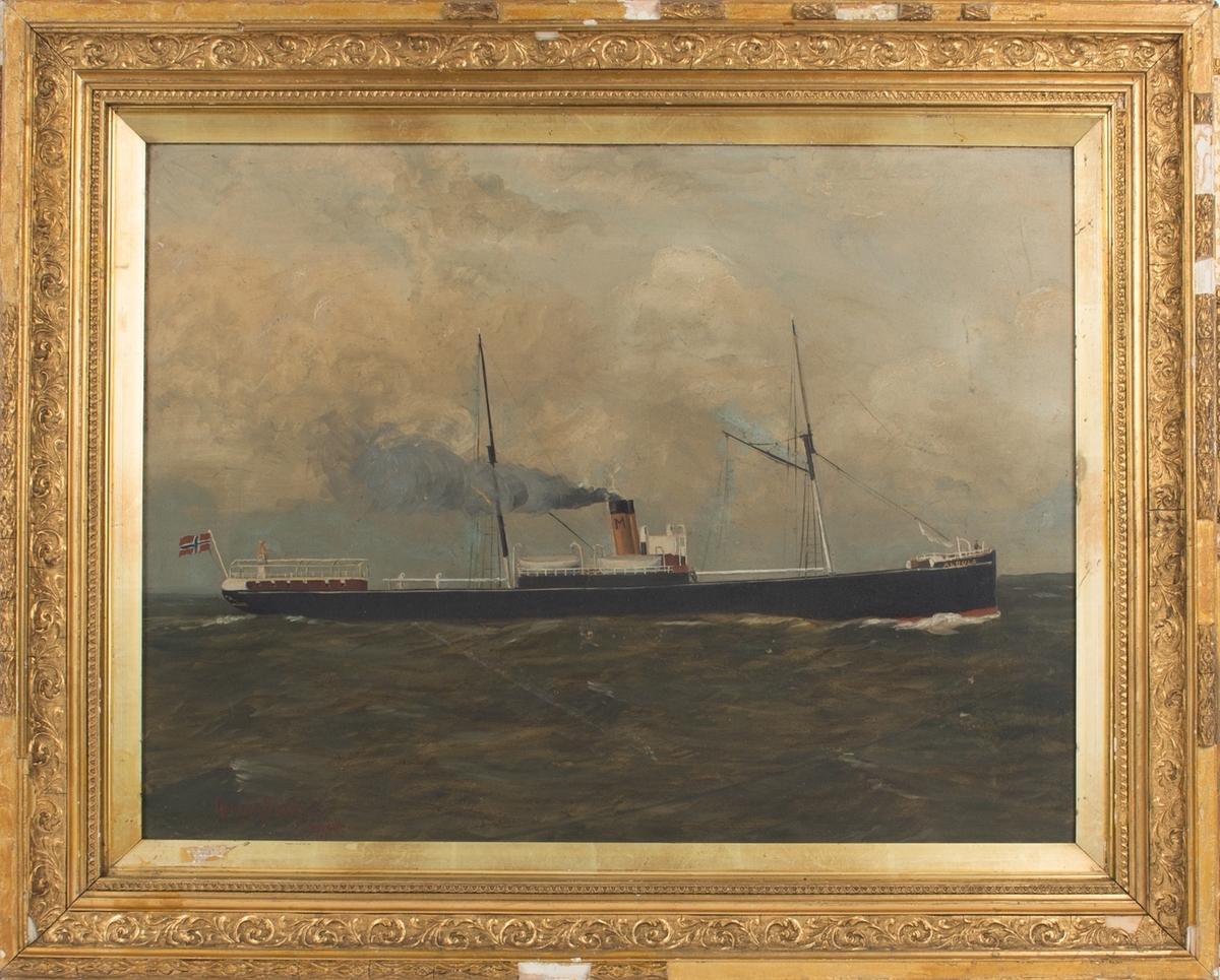 Skipsportrett av DS ALBULA under fart med skorsteinsmerke til rederiet C. Mathisen i Bergen.