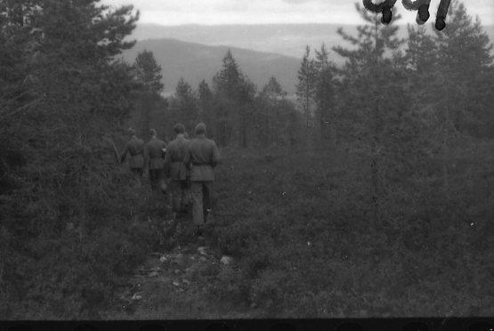Militärer i skog.