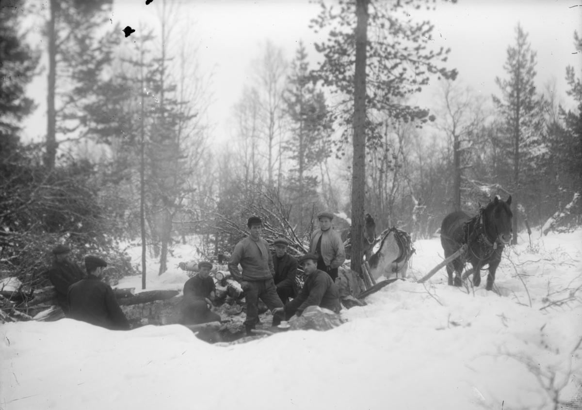 Skogsdrift, skogsarbeidere i vinterlandskap, hester og menn har matpause