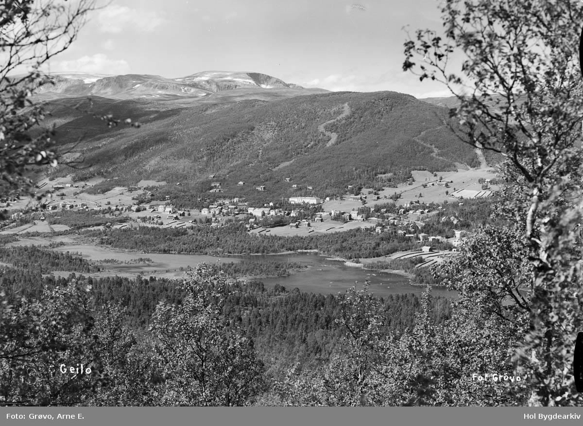 Tettstad, Geilo, fjellbygd, sommar, Hallingskarvet, Landskap,