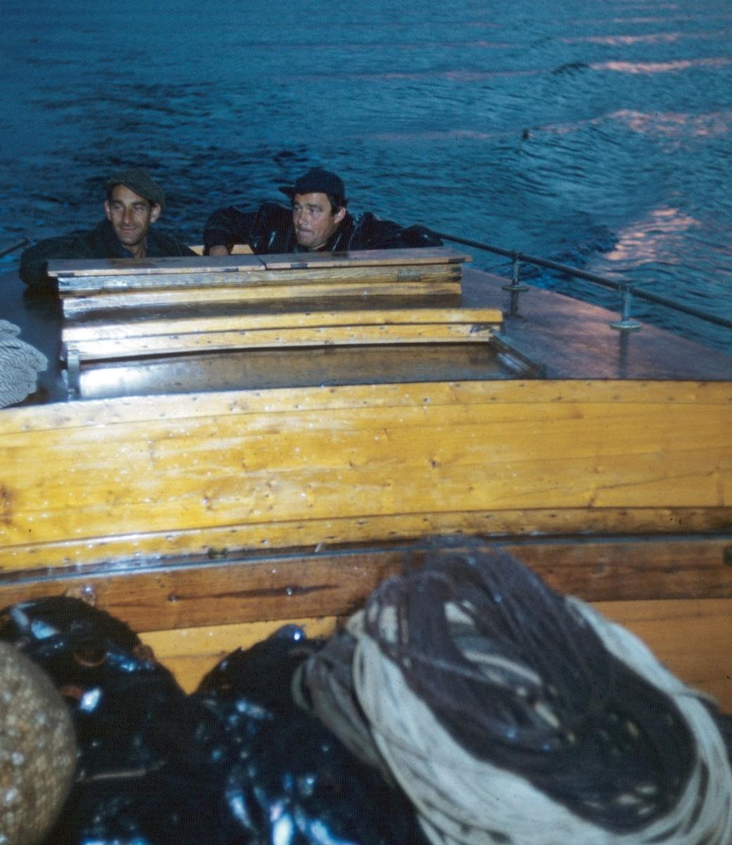 Strömmingsfiskare