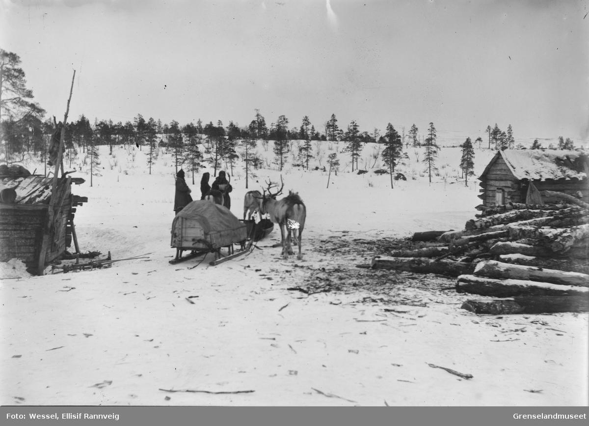 Reinslede, Saani, med oppakning, to kvinner og en mann står ved siden av, skoltesamer? Bildet er muligens tatt på russisk side (Suenjel, Notjavre?)