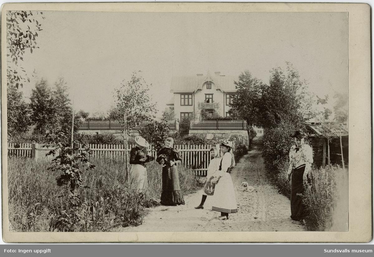 Märta Johanna Lörgren (f. 1851) med bl a döttrar Elin (f. 1876) och Anna (f. 1879) framför sin bostad på fastigheten Torpet på Östermalm. Maken hette Axel Ferdinand Lörgren (f. 1845) och arbetade som bankkassör. Gården brann ner i stadsbranden 1888.