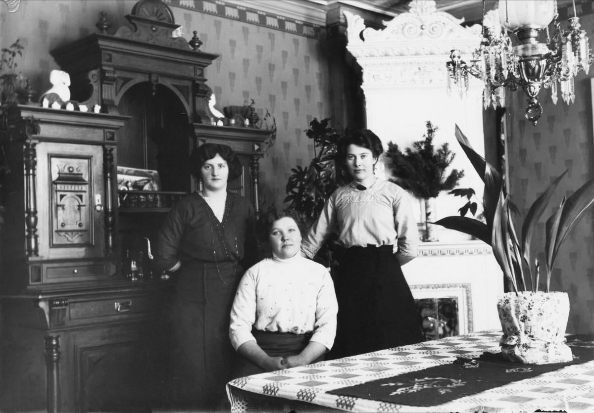 Hos Lassar-Olov i Heden. Tre kvinnor vid rumsbord