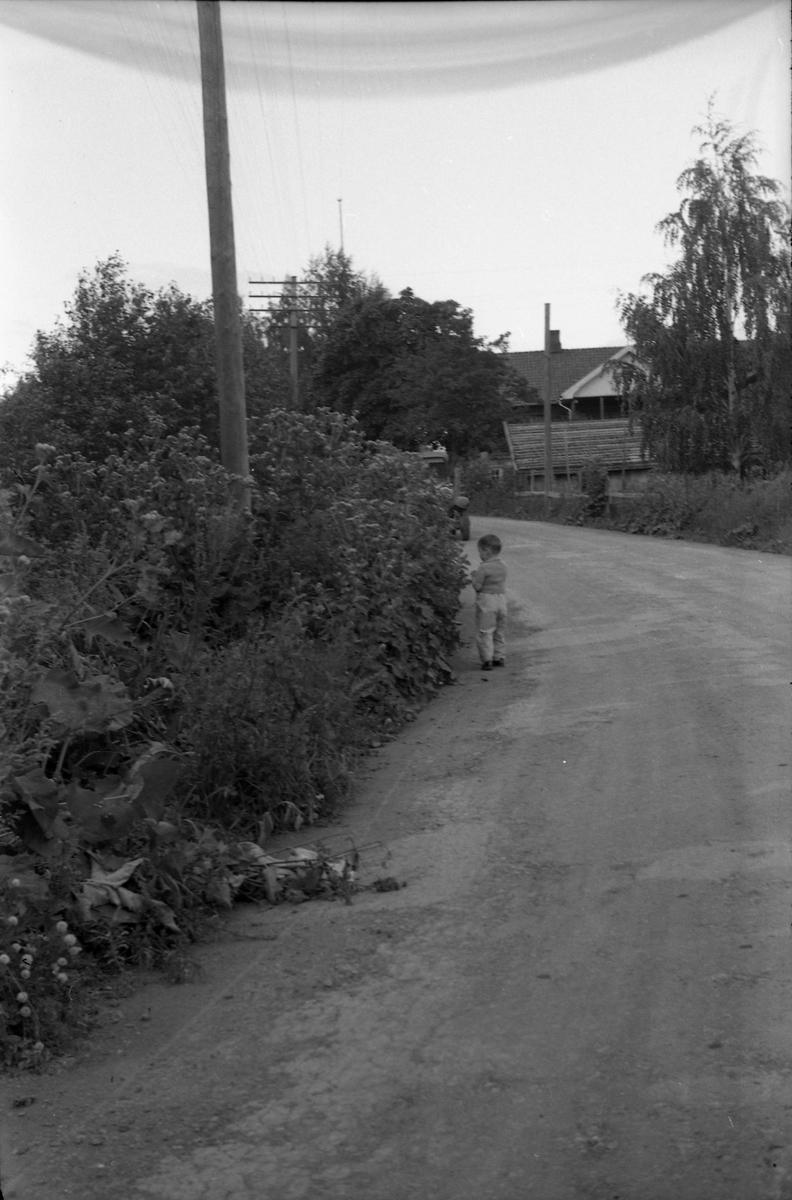 To bilder fra en landeveg i en sving der en smågutt står i vegkanten og en bil kommer imot. Hverken stedet eller gutten er identifisert.