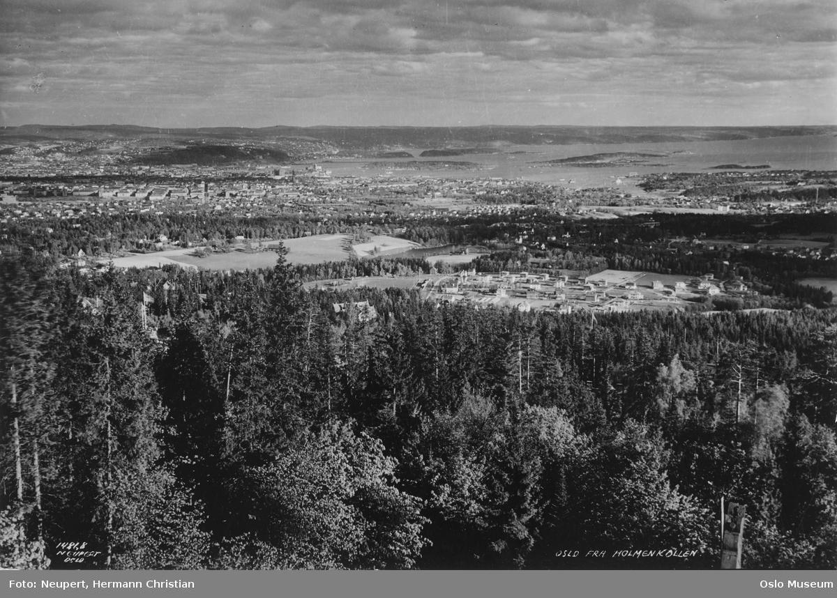 utsikt, skog, gårder, kulturlandskap, villabebyggelse, by, fjord, øyer