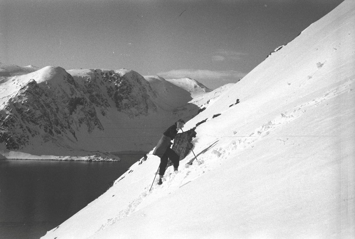 Gjenreisning. Honningsvåg. Solveig Hanche-Olsen på skitur opp Storfjellet. 1946/47.