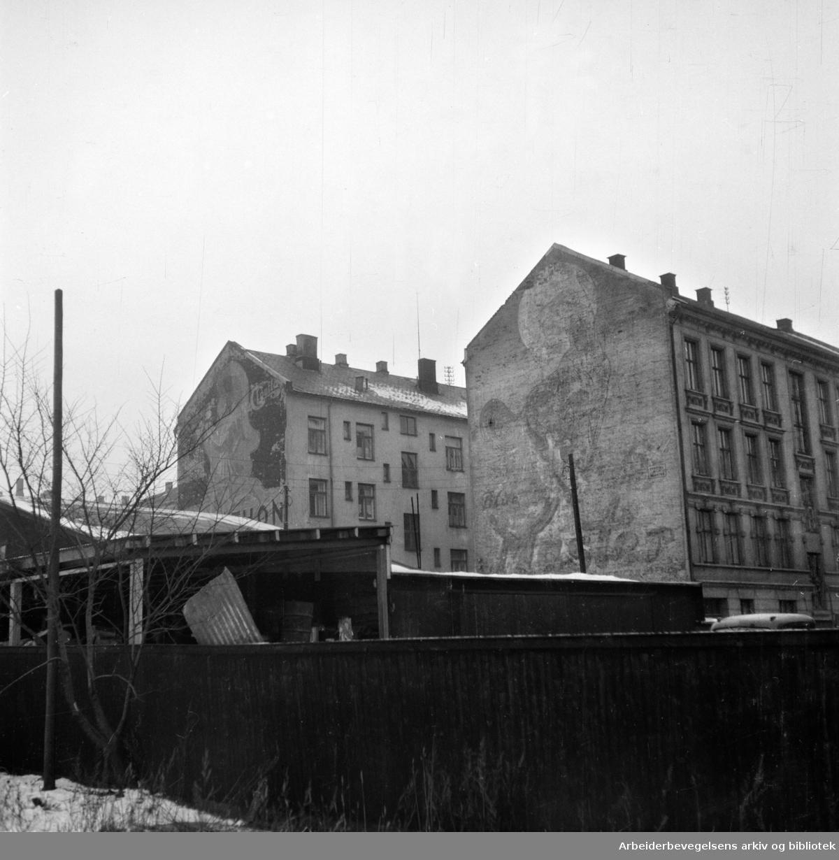 Klosterenga. Januar 1954