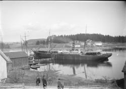 D/S Pollux, tilhørte Det Bergenske Dampskibsselskab, fraktes