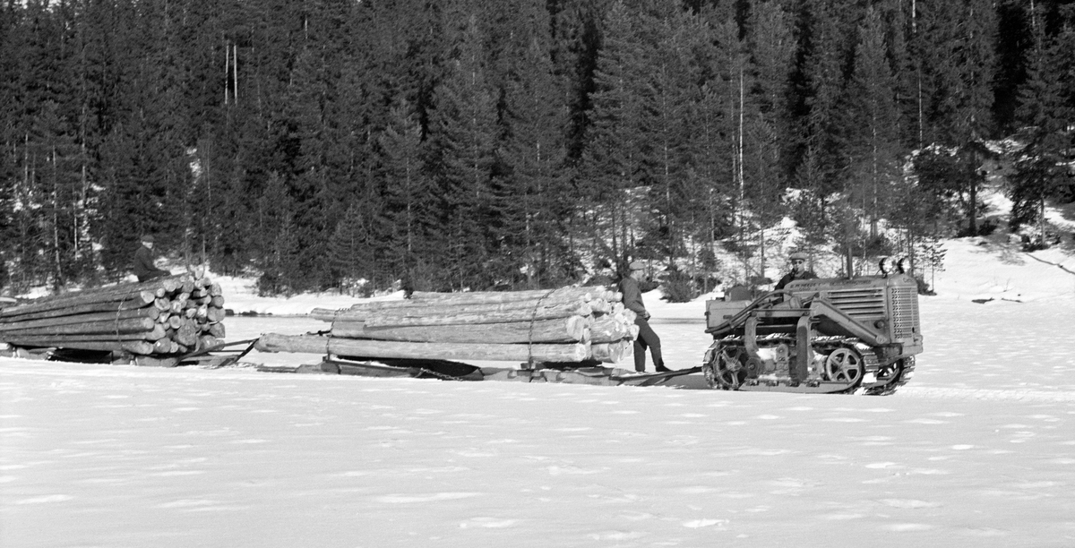Tidlig forsøk med mekanisering av tømmerkjøringa i skogen.  Fotografiet skal være fra skogene som tilhører Ask gods på Ringerike.  Det viser en beltetraktor på ei snødekt flate i skogen.  Traktoren var forspent to kraftige tømmerrustninger, todelte sleder (også kalt «bukk og geit»), med store tømmerlass.  Da dette fotografiet ble tatt sto to menn i samtale ved traktoren, mens en tredjemann satt på det bakerste tømmerlasset.