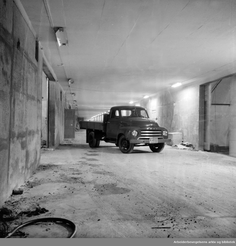 Ekeberganlegget. Juli 1956