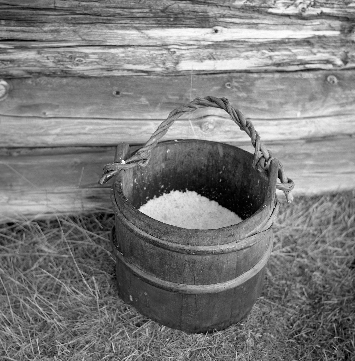 Lagget bøtte av tre, fotografert ved veggen på et laftet hus på Fiskevollen i Øvre Rendalen.  To av stavene – på hver sin side av bøtta – er noe lengre enn de øvrige.  I disse er det boret hull, hvor det er festet en bærehank av ei vridd bjørkevidje.  Bøtta er omtrent halvfylt av et kvitt materiale, antakelig grovt salt, som ble brukt til konservering av fangstene fra de store sesongfiskeriene av sik og røye i Sølensjøen.  Konserveringa skjedde enten ved forholdsvis «hard» nedsalting i tretønner i ymse formater – fisk og salt, lag på lag.  Ved raking ble godt reingjort fisk lagt i en lake av salt og sukker.  Også i denne sammenhengen brukte man lenge tretønner som beholdere, men da dette fotografiet ble tatt, i midten av 1960-åra, var raking i plastbøtter i ferd med å bli den mest utbredte konserveringsmetoden i Sølensjøfisket.