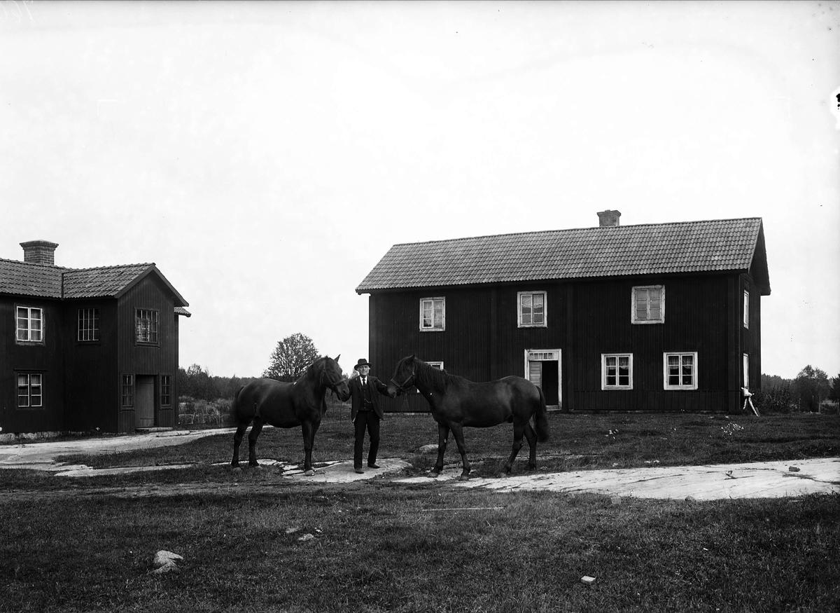 Man med två hästar på gårdsplanen, Dragmansbo, Altuna socken, Uppland