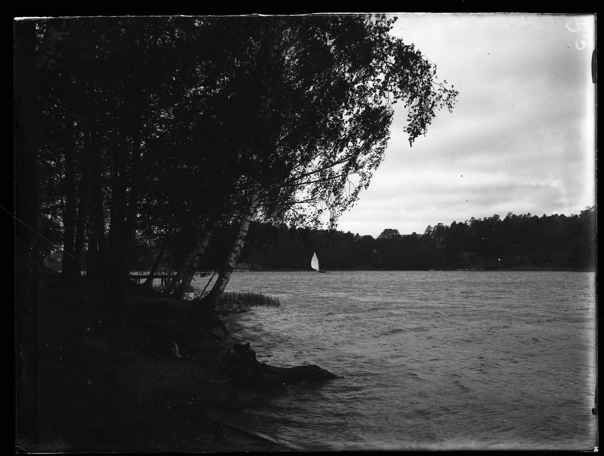 Seglare i Brunnsviken vid Hagaparken i Stockholm.