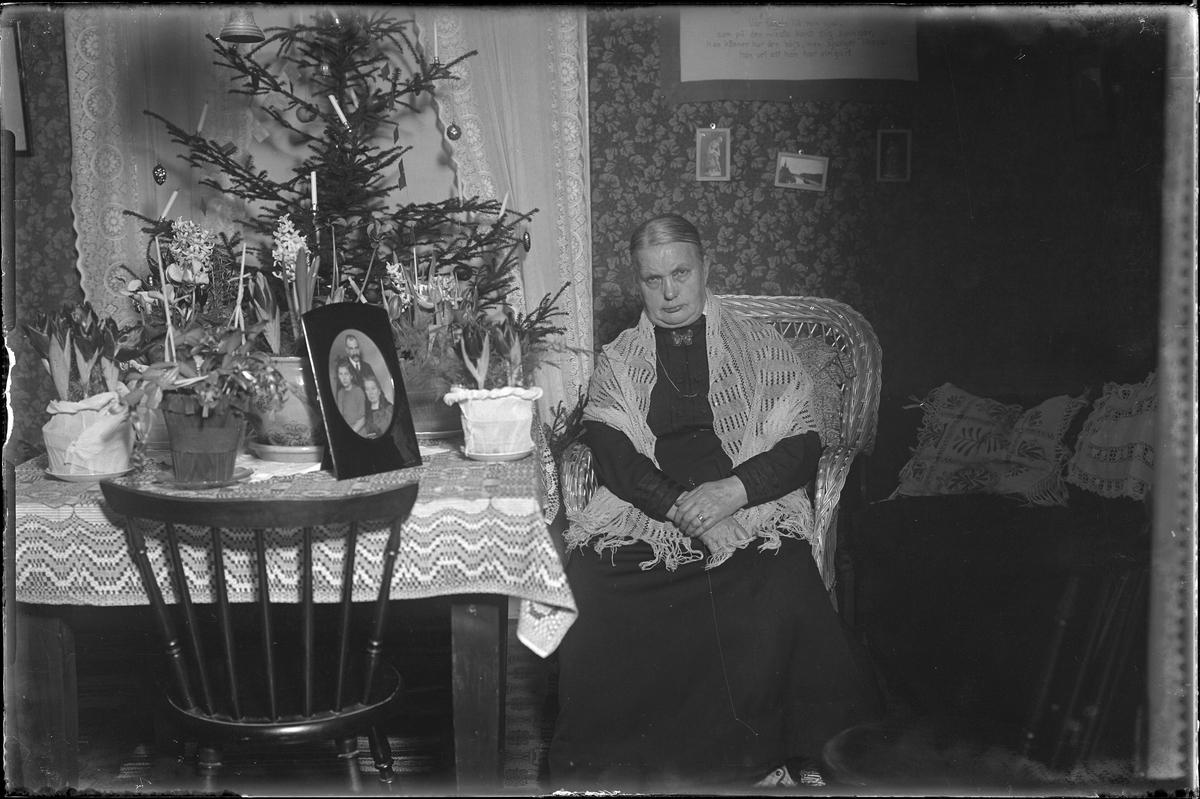 Fru Kansson fotograferad i samband med hennes 60årsdag. Hon sitter i en korgstol och på bordet bredvid henne står hyacinter, tulpaner, en novemberkaktus och ett inramat familjeporträtt. Bakom bordet står en klädd julgran.