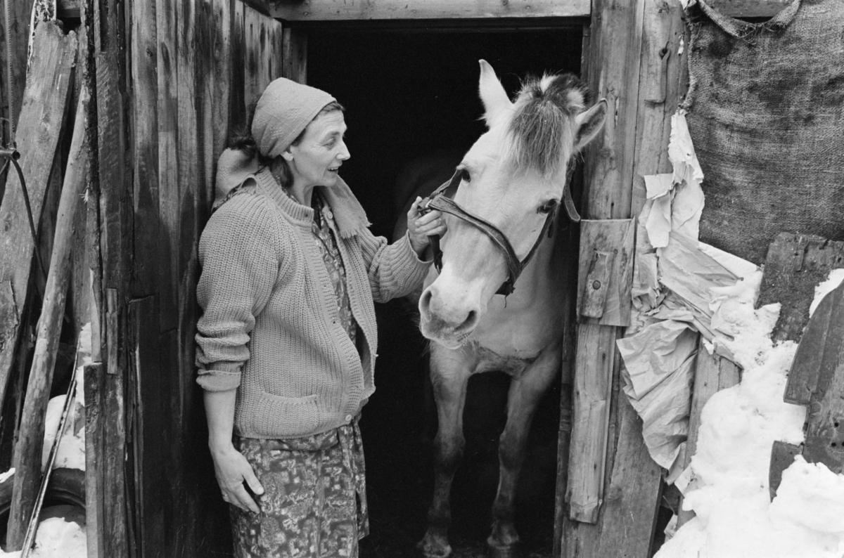 En kvinne med en hest ved en stall på Røros.