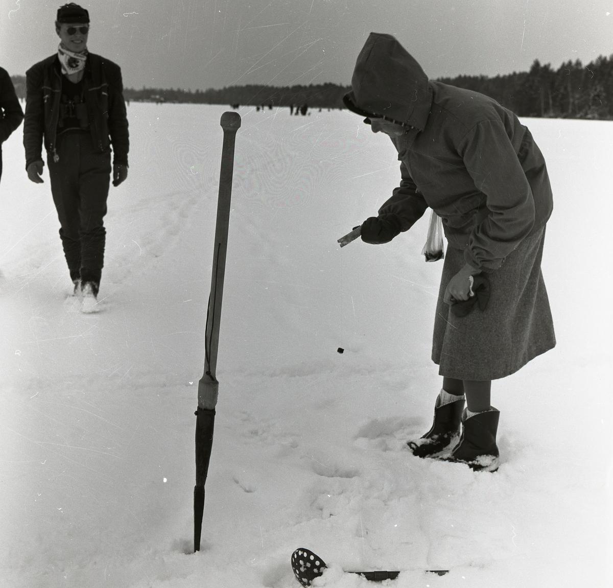 Kvinna med fiskeutrustning vid pimpelhål. IOGT 0CH FK pimpeltävling på Skidtjärns is, 14 april 1957.