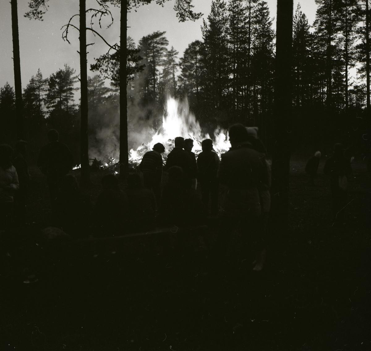 En grupp människor står i skogen vid Glössbo och tittar på en majkase, 30 april 1984.