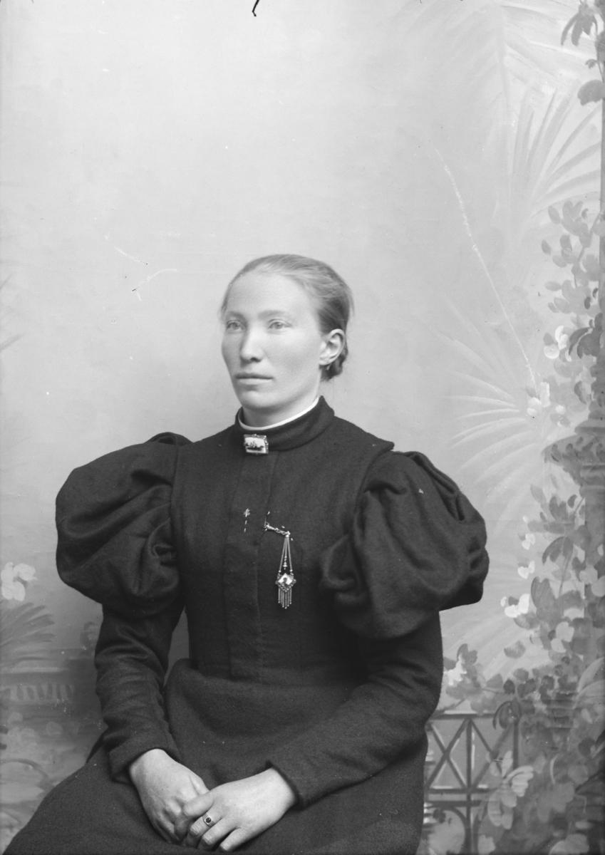 Portrett, brystbilde, Anna Jenshus