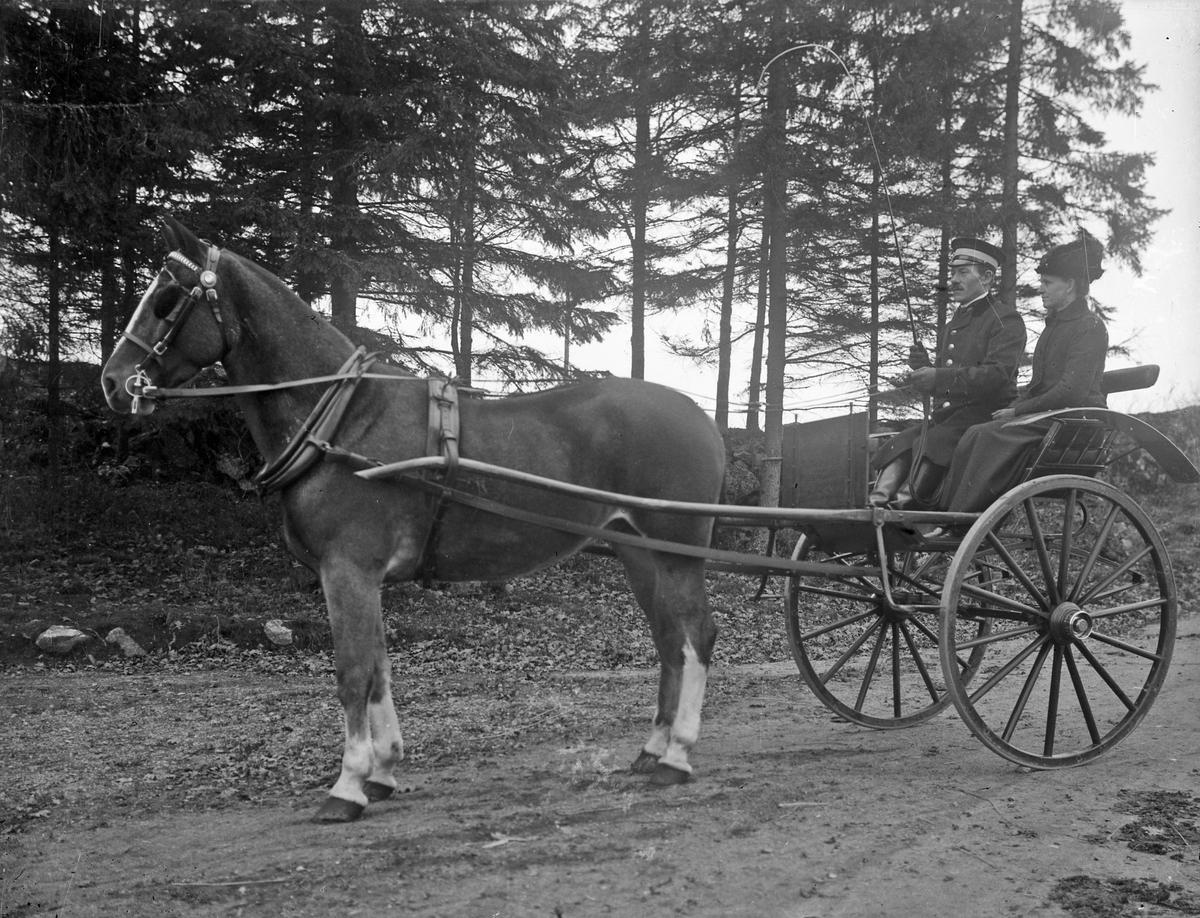 Elin Matilda Magnusson och Karl Hjalmar Magnusson porträtterade på en Tidaholm-kärra. Kärran användes i huvudsak för att träna hästarna. Karl Hjalmar Magnusson var kusk på Österbodarne.