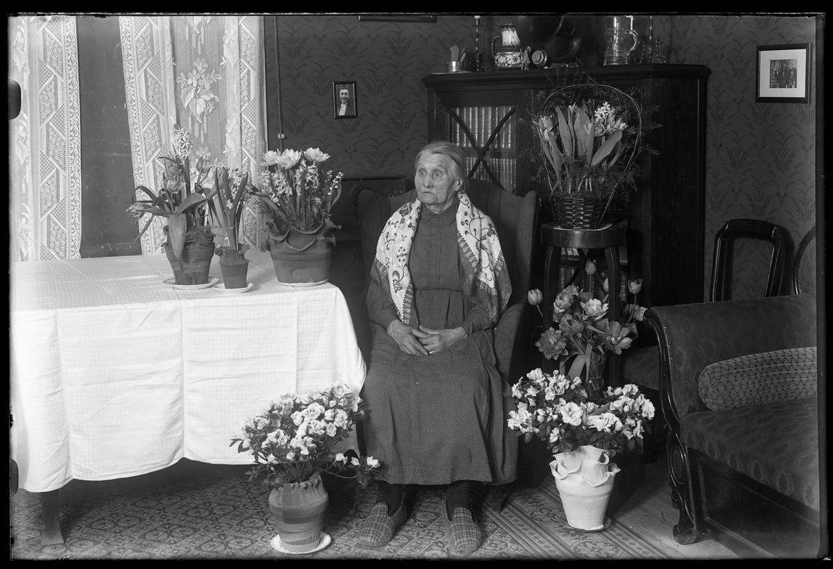 """En kvinna i tofflor sitter i ett finrum omgiven av blommor. Bilden är tagen i samband med hennes födelsedag. I fotografens egna anteckningar står det """"Fru Håkansson 80år"""", tolkat som Anna Kristina Håkansson."""