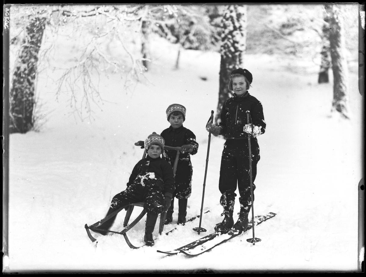 """En flicka står på ett par skidor. Hennes yngre syster sitter på en spark medan hennes tvillingbror står bakom och puttar på. I fotografens anteckningar står det """"Ing.[enjör] Bergs barn"""", tolkat som tvillingarna Peter Wilhelm och Ulla Maria samt deras storasyster Elsa Margareta."""