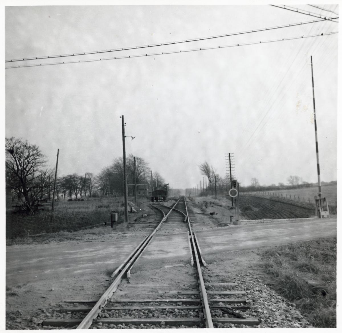 Järnvägsövergång vid Olseröd, på sträckan mellan Degeberga och Brösarp.