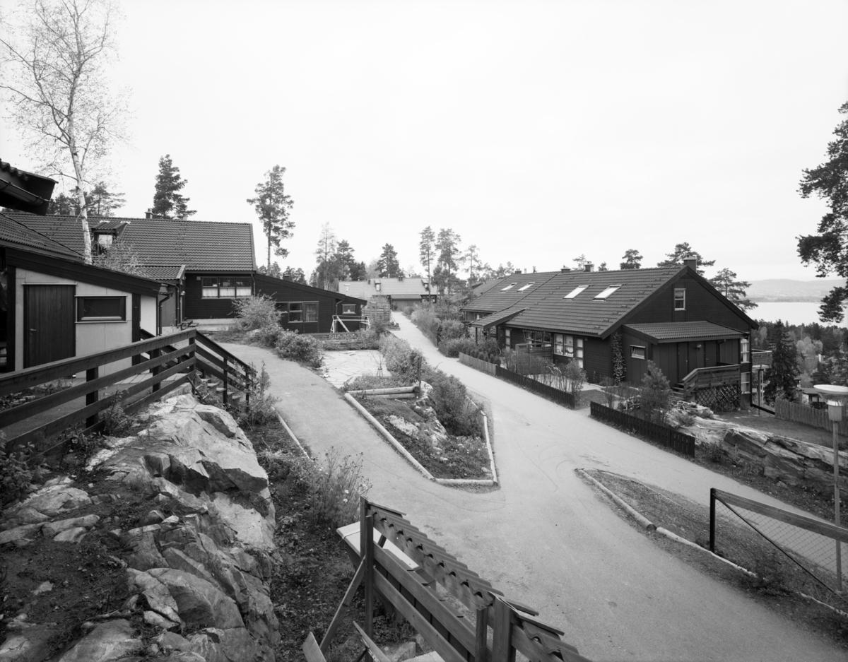 Oksval III og IV.ark. Rosland, sept. 79.