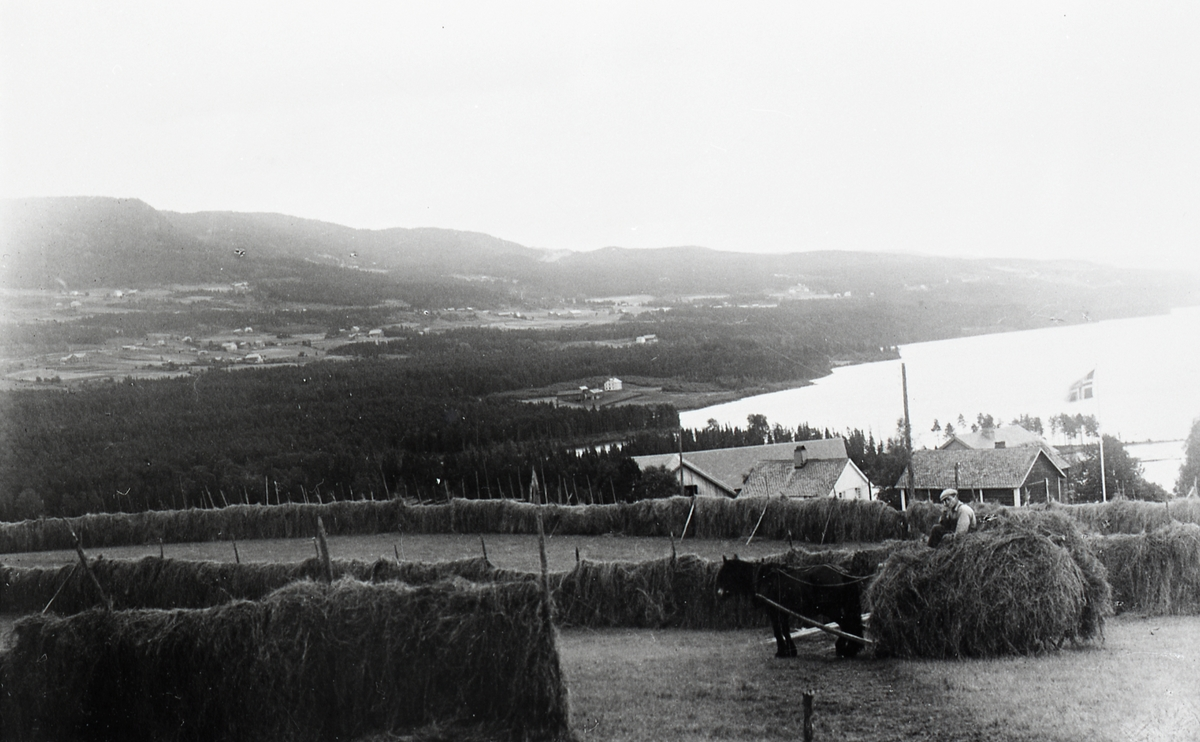 Høykjøring på nedre Onstad i 1939.