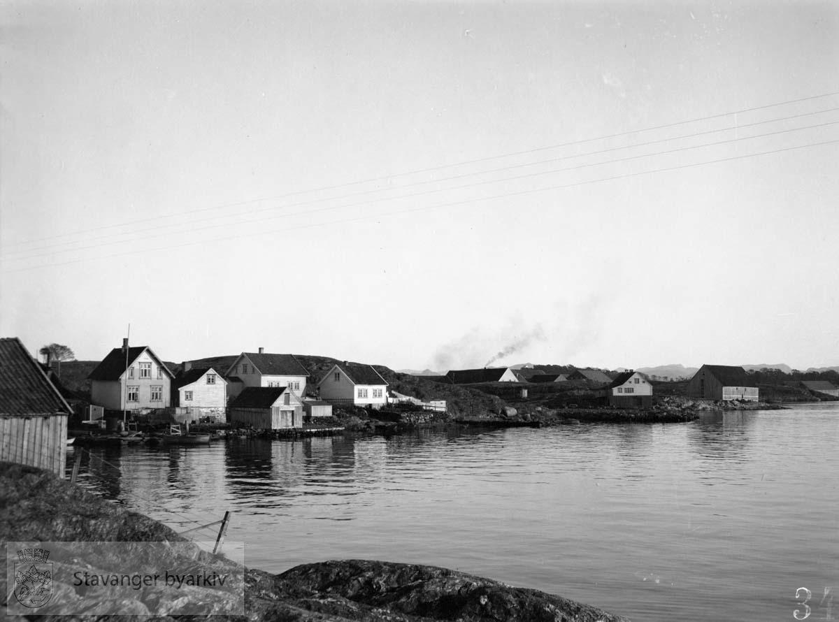 Hus ved sjøen, Buøy
