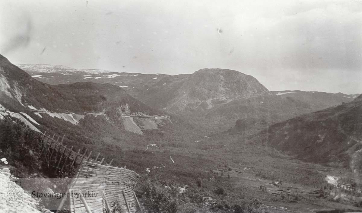 Bergensbanen gjennom fjellandskap