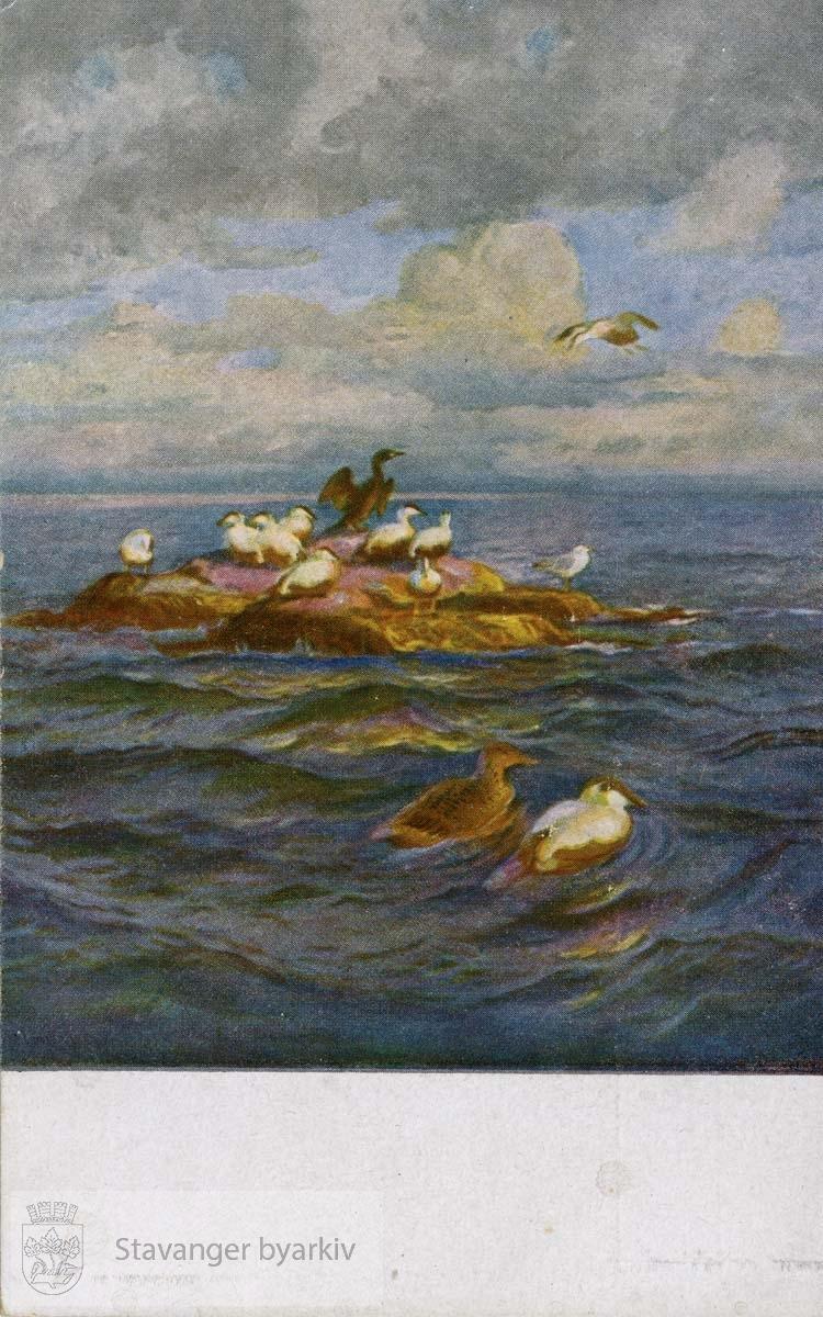 Maleri av sjøfulg på holme