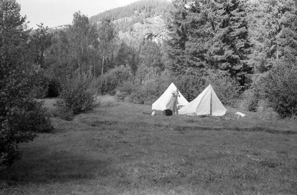 Tre avfotograferte bilder av to telt slått oppp på ei