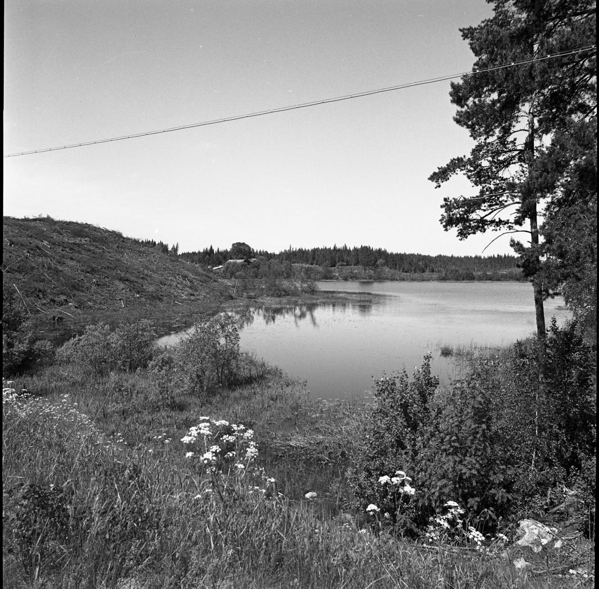 Tjurlången och Sirsjön, miljöbild. Landskap.