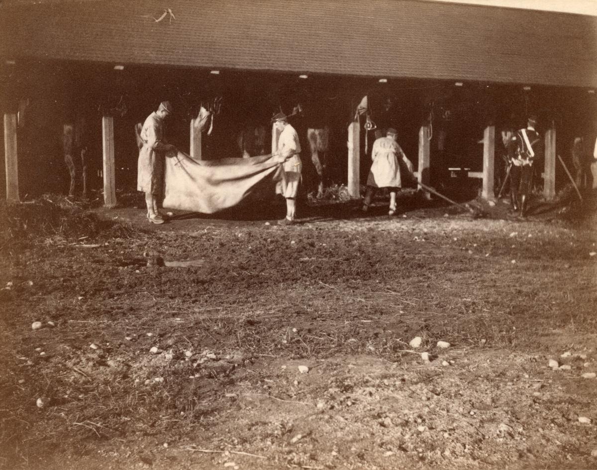 Soldater från Livregementets husarkår vid stall.