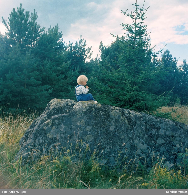Sommarställe. Ett litet barn sitter på en stor sten på en äng med gran och tallar i bakgrunden.