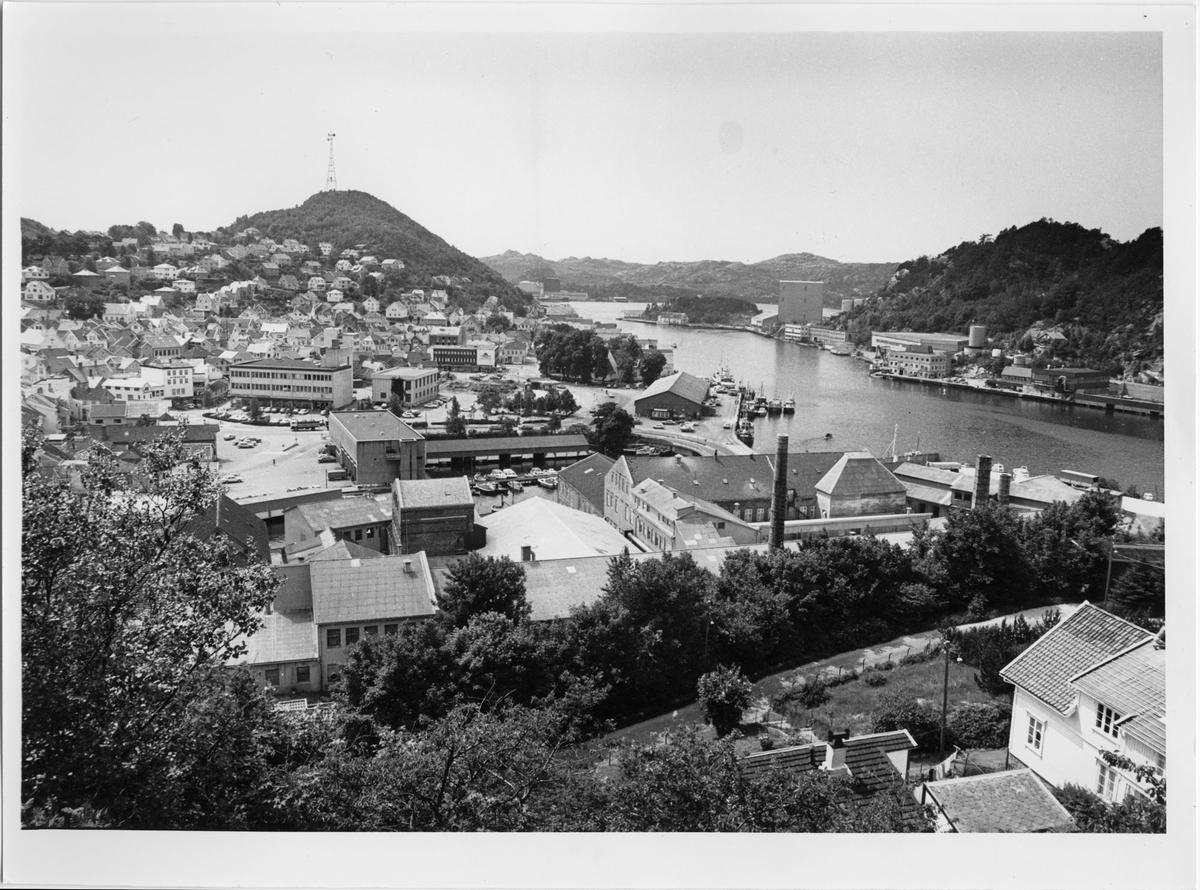 Utsikt over Egersund fra Kråkefjellet
